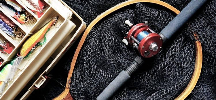 La pêche à l'étang du Marais